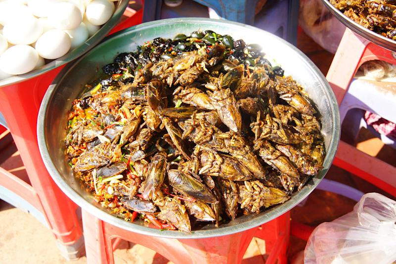 food industry experts predict future of deep fried insects a traditional snack skoun cambodia
