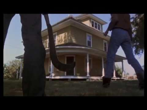 """<p><em>Children of the Corn</em> is one of the most iconic productions of King's work, and while it's a bit cheesy, it still holds up to this day. What would you do if you found a group of religious and terrifying children...living in a corn field? Based on a story from his 1978 collection <em>Night Moves, </em>this adaption is fairly faithful, and is a perfect movie to watch with a few beers, some pizza, and some friends. </p><p><a class=""""link rapid-noclick-resp"""" href=""""https://www.amazon.com/Children-Corn-Peter-Horton/dp/B07X9DJWY5/ref=sr_1_11?keywords=stephen+king&qid=1583771801&s=instant-video&sr=1-11&tag=syn-yahoo-20&ascsubtag=%5Bartid%7C2139.g.30443371%5Bsrc%7Cyahoo-us"""" rel=""""nofollow noopener"""" target=""""_blank"""" data-ylk=""""slk:Stream It on Amazon Prime Video"""">Stream It on Amazon Prime Video</a></p><p><a href=""""https://www.youtube.com/watch?v=Qs6z1D4gVp4"""" rel=""""nofollow noopener"""" target=""""_blank"""" data-ylk=""""slk:See the original post on Youtube"""" class=""""link rapid-noclick-resp"""">See the original post on Youtube</a></p>"""