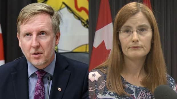 Education Minister Dominic Cardy and Dr. Cristin Muecke, the deputy chief medical officer of health, addressed a news conference laying out this year's back-to-school plan. (Government of New Brunswick - image credit)