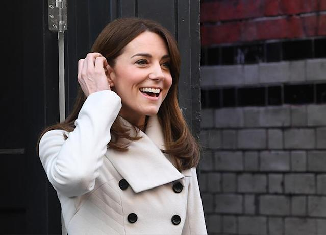 kate middleton s family tree from her siblings to her cousin ellen degeneres seriously kate middleton s family tree from her