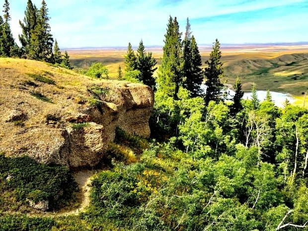 While much of southwestern Saskatchewan is prairie, the Cypress Hills offer some beautiful, treed views.