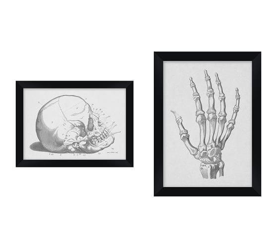 <p>Based on real sketches from early 20th-century medical journalists, the <span>Anatomy</span> ($79-$129) drawings are so captivating to look at.</p>