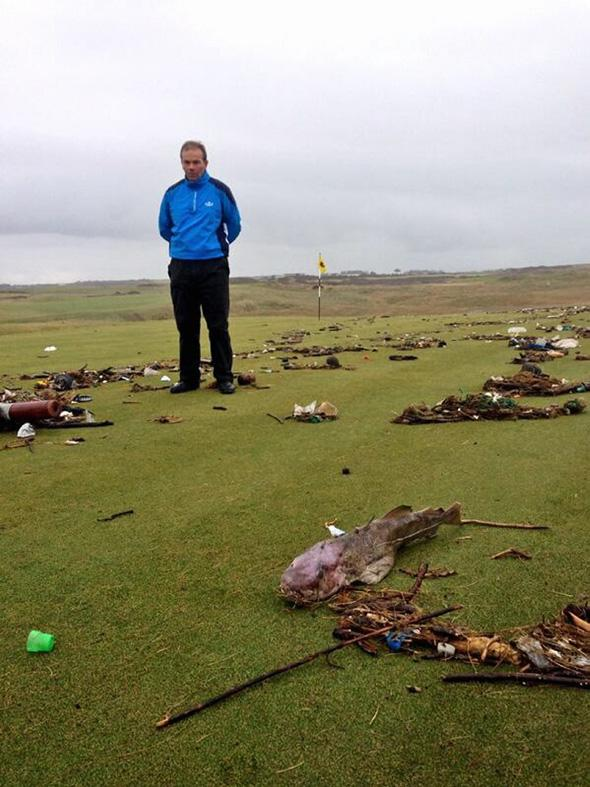 Pictured: Peter Evans stands on the third green with the cod that was discovered there.Re: A fully grown cod has been discovered at a golf course in south Wales. Peter Evans discovered the fish on the third green of the Royal Porthcawl Golf Club.The fish is believed to have been washed to the shore during the recent storms which has seen giant waves hitting the shores