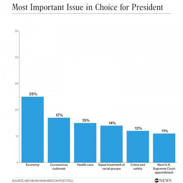Most important issue in choice for president