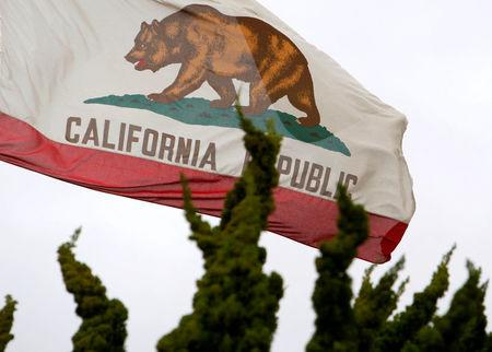 FILE PHOTO - The California flag flies above City Hall in Santa Monica, California, U.S. on February 6, 2009.   REUTERS/Lucy Nicholson/File Photo