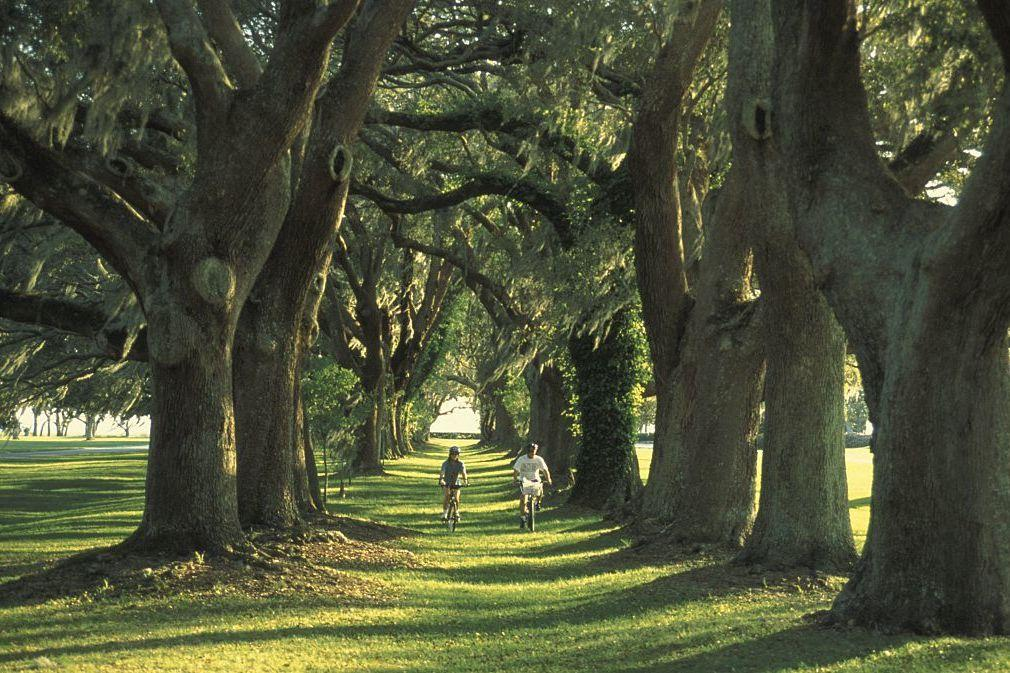 """<p>If you want of taste of old Southern tradition, head to St. Simons Island for ancient oaks and breezy marshes. This historic island is like taking a trip back in time. Book your stay at the <a rel=""""nofollow"""" href=""""http://www.kingandprince.com"""">King and Prince Resort</a> for access to the quiet beach, and venture into town for quaint shops and no-fuss restaurants. (Try out <a rel=""""nofollow"""" href=""""http://www.southernsoulbbq.com"""">Southern Soul Barbecue</a> or a local favorite, <a rel=""""nofollow"""" href=""""http://www.gnatslanding.com"""">Gnat's Landing</a>.) Drive the winding roads to visit beautiful Christ Church, Frederica, and its historic cemetery.</p>"""