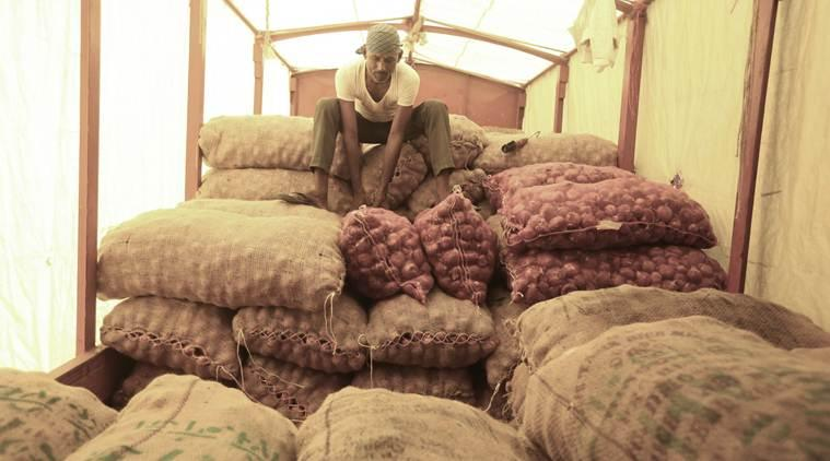 Maharashtra: Onion wholesale prices fall, but hoteliers still using onions sparingly