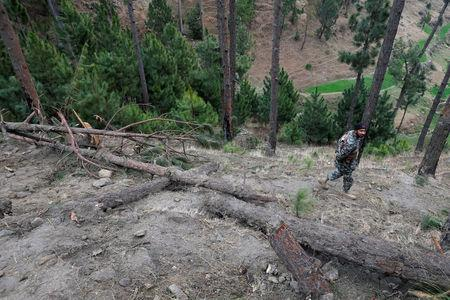Pakistan's army soldier walks near the damaged trees, after Indian military aircrafts struck on February 26, according to Pakistani officials, in Jaba village, near Balakot, Pakistan, March 7, 2019. REUTERS/Akhtar Soomro