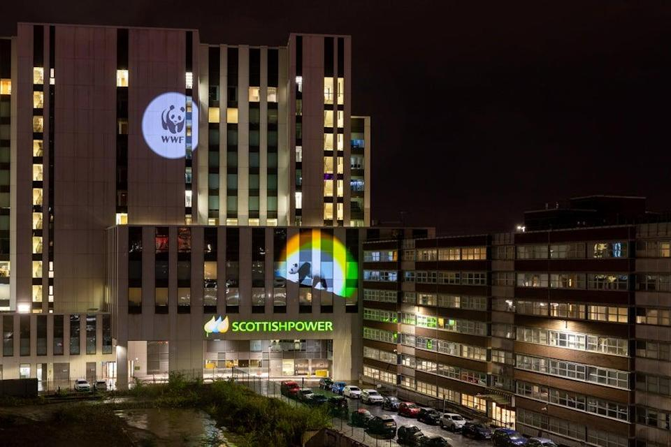 WWF's panda logo was projected onto ScottishPower's Glasgow HQ to mark the two organisations working together (ScottishPower/PA)