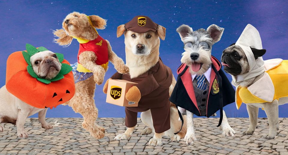 dogs wearing pumpkin, wonder woman, ups delivery driver, harry potter, and banana halloween costume