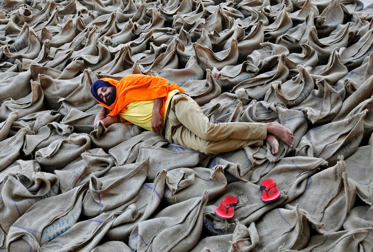 A farmer rests upon sacks filled with paddy at a wholesale grain market in Chandigarh, India, October 16, 2016. REUTERS/Ajay Verma     TPX IMAGES OF THE DAY