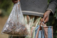 A farmer's daughter carries bags of locusts she caught to be sold as poultry feed to a local vendor in Elburgon, in Nakuru county, Kenya Wednesday, March 17, 2021. It's the beginning of the planting season in Kenya, but delayed rains have brought a small amount of optimism in the fight against the locusts, which pose an unprecedented risk to agriculture-based livelihoods and food security in the already fragile Horn of Africa region, as without rainfall the swarms will not breed. (AP Photo/Brian Inganga)