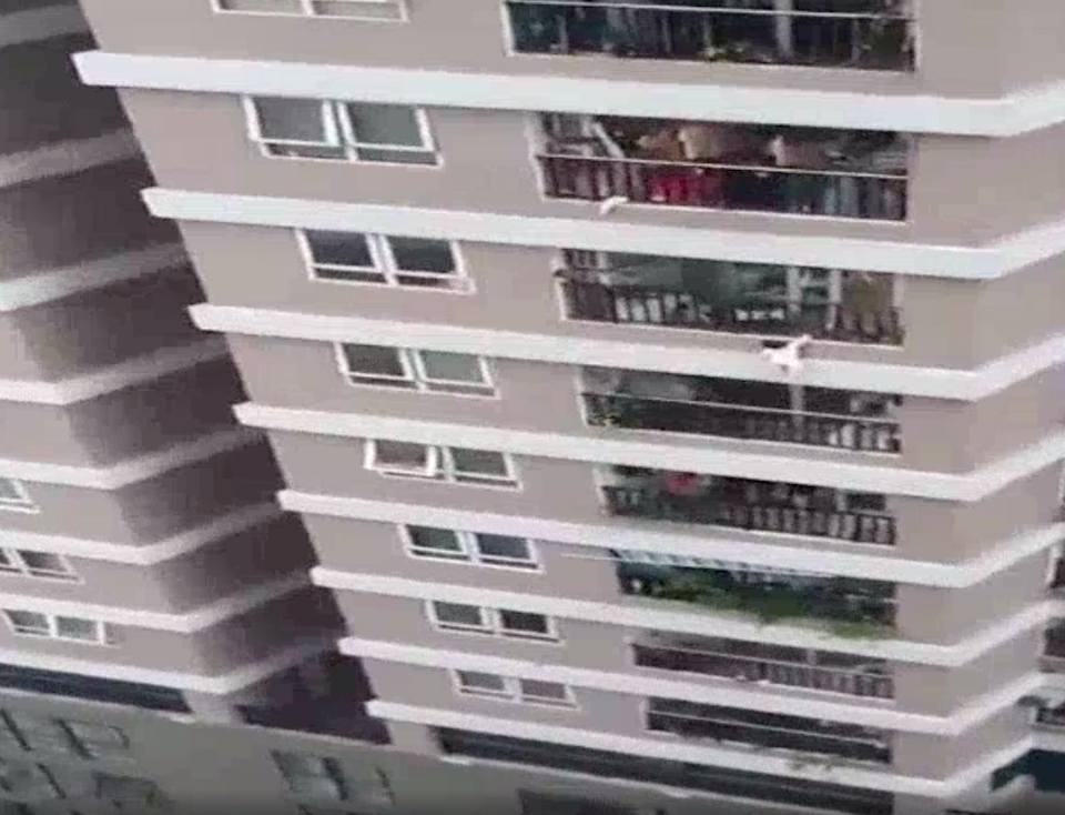 <p>Screengrab from a short video where the girl can be seen hanging from the balcony before she falls</p> (Quang Son)