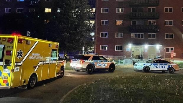 A three-year-old child fThe fall is considered accidental, according to Gatineau police. (S.B./Radio-Canada  - image credit)