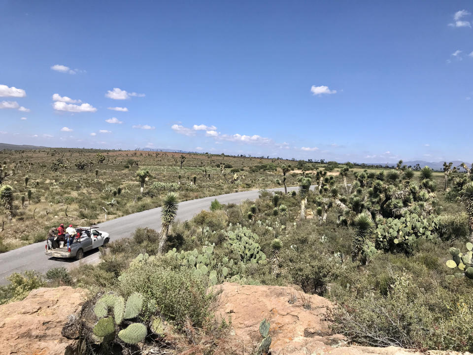 Many of the deceased and survivors of the San Antonio trailer left villages and towns in the states of Aguascalientes and Zacatecas, in central Mexico, one of the poorest areas of the country. (Damia Bonmati)