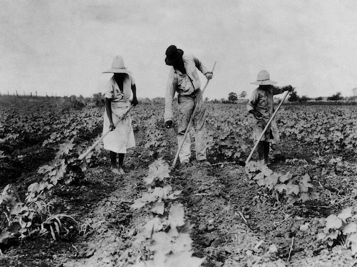 Enslaved Black Americans working on a plantation in the 19th century. (Getty Images)