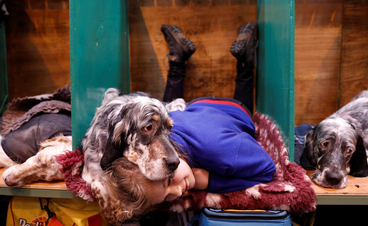 <p>Katie McCloughlin lies with Topsy, her English Setter, during the third day of the Crufts Dog Show in Birmingham, Britain March 11, 2017. (Photo: Darren Staples/Reuters) </p>