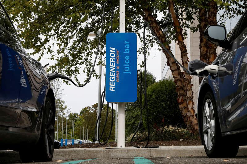 FILE PHOTO: An electric car charging station is seen at the Regeneron Pharmaceuticals company's Westchester campus in Tarrytown, New York