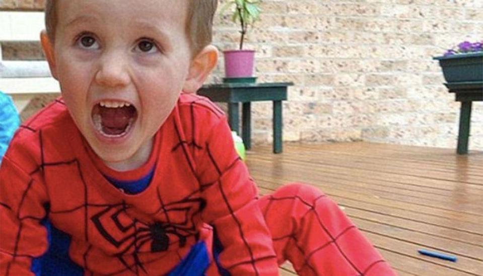 William Tyrrell vanished from his grandmother's yard in the NSW mid-north coastal town of Kendall in September 2014. Source: 7 News