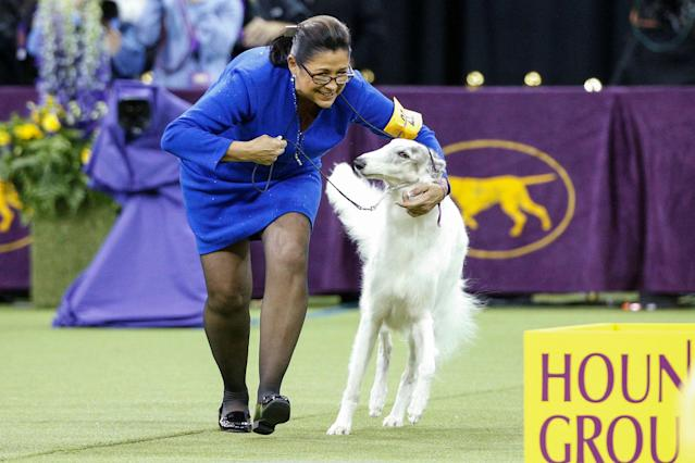 <p>Lucy, a Borzoi walks with her handler after winning best in Hound group during judging at the 142nd Westminster Kennel Club Dog Show in New York, Feb. 12, 2018. (Photo: Brendan McDermid/Reuters) </p>