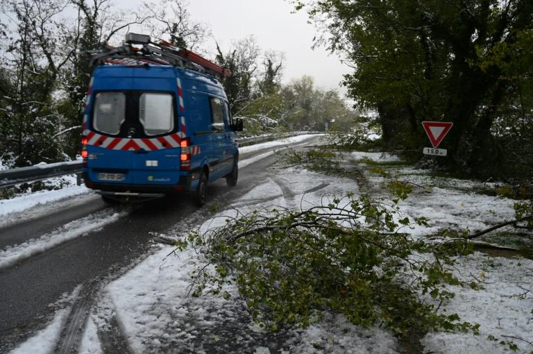Downed trees and branches had cut power to some 300,000 homes. (AFP Photo/JEAN-PHILIPPE KSIAZEK)