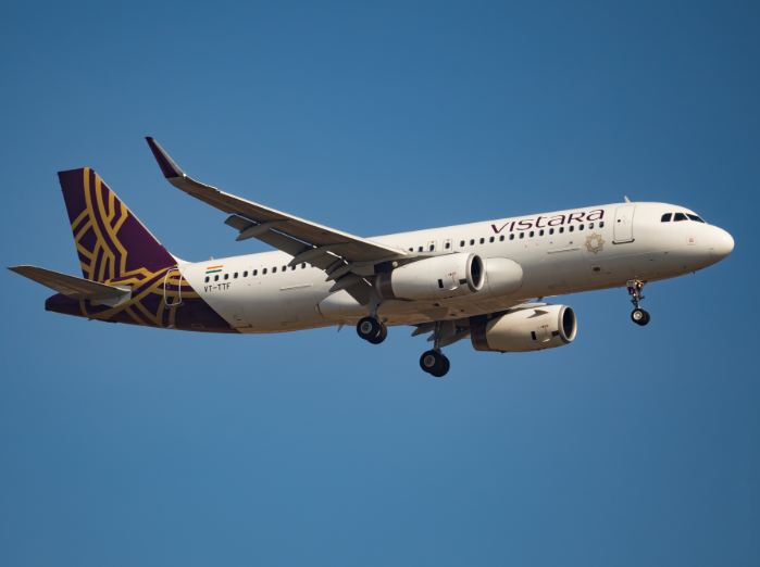 <p>The outbreak was traced to a Vistara flight</p> (Wikimedia/Venkat Mangudi)