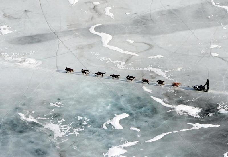 In this March 5, 2013 photo, a musher and dog team cross the ice between the Rohn and Nikolai checkpoints in Alaska during the Iditarod Trail Sled Dog Race.   (AP Photo/The Anchorage Daily News, Bill Roth)