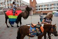 A woman and child are photographed taking a camel ride while a pony is being groomed in Bor, Nizhny Novgorod, Russia July 1, 2018. REUTERS/Damir Sagolj