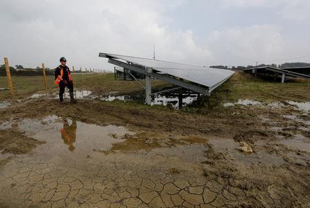 Anesco engineer Tommy Good walks  around Clayhill Solar Power Farm, Britain's first to operate without a government subsidy in Westoning, Britain September 26, 2017. REUTERS/Darren Staples