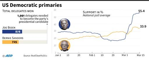 Popular surport for Joe Biden and Bernie Sanders, plus delegates won so far in the race to become the Democratic Party's presidential candidate
