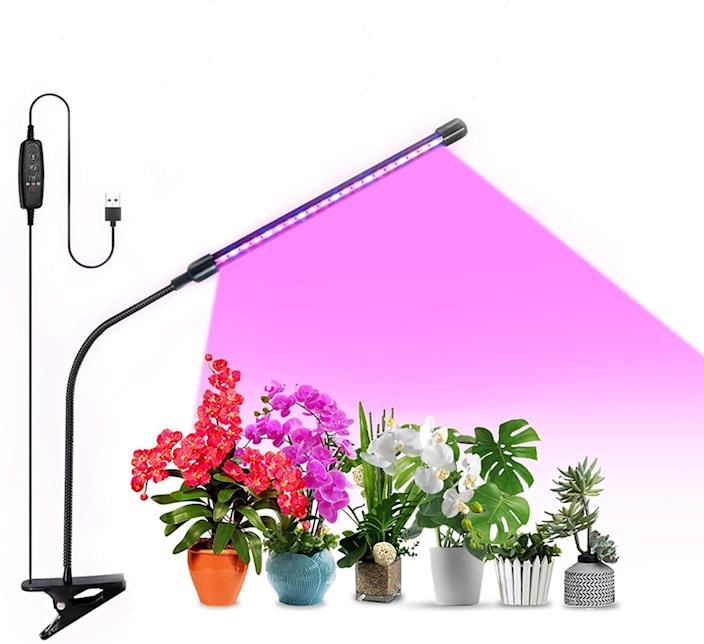 <p>Clamp this adjustable <span>20W Growing Lamp</span> ($17) to your desk to give your plants the energy they need to grow. It has red, blue, and mixed light settings - red increases the accumulation of chlorophyll, and blue promotes chlorophyll synthesis. </p>