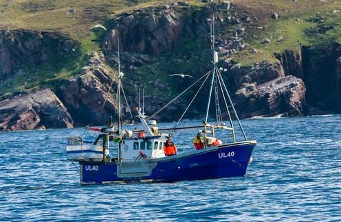"""<span class=""""attribution""""><a class=""""link rapid-noclick-resp"""" href=""""https://www.shutterstock.com/image-photo/ullapool-scotland-august-28-2019-fishing-1621202401"""" rel=""""nofollow noopener"""" target=""""_blank"""" data-ylk=""""slk:A blue fishing trawler off the coast of Ullapool."""">A blue fishing trawler off the coast of Ullapool.</a></span>"""