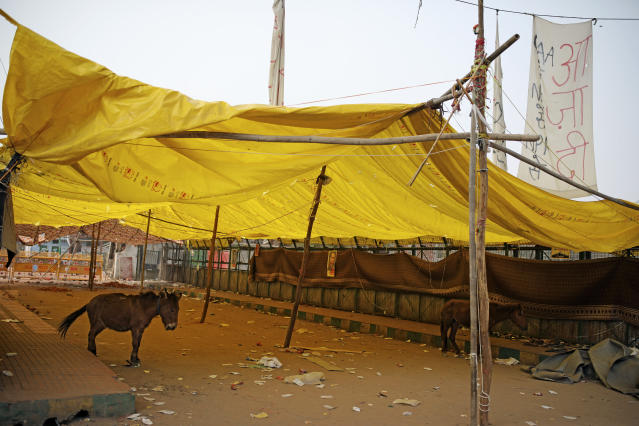 Donkeys stand inside a tent abandoned by Muslims protesting against a contentious new citizenship law, following violence in New Delhi, India, Wednesday, Feb. 26, 2020. At least 20 people were killed in three days of clashes in New Delhi, with the death toll expected to rise as hospitals were overflowed with dozens of injured people, authorities said Wednesday. The clashes between Hindu mobs and Muslims protesting a contentious new citizenship law that fast-tracks naturalization for foreign-born religious minorities of all major faiths in South Asia except Islam escalated Tuesday. (AP Photo/Altaf Qadri)