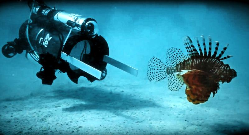 Robots in Service of the Environment (RSE) image of an unmanned undersea robot