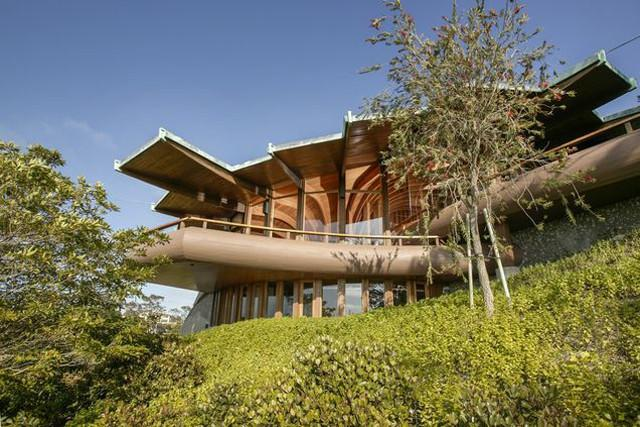 This 36 million la jolla home features a roof reminiscent of a this 36 million la jolla home features a roof reminiscent of a blooming lotus flower mightylinksfo