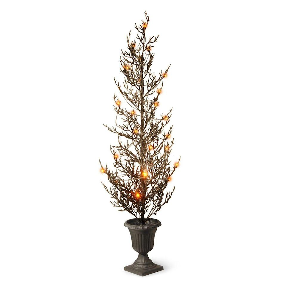 """<p><strong>National Tree Company</strong></p><p>target.com</p><p><strong>$53.99</strong></p><p><a href=""""https://www.target.com/p/46-halloween-tree-with-lights-national-tree-company/-/A-52224208"""" rel=""""nofollow noopener"""" target=""""_blank"""" data-ylk=""""slk:BUY NOW"""" class=""""link rapid-noclick-resp"""">BUY NOW</a></p><p>Imagine two of these flanking your front door. Yes and yes.</p>"""