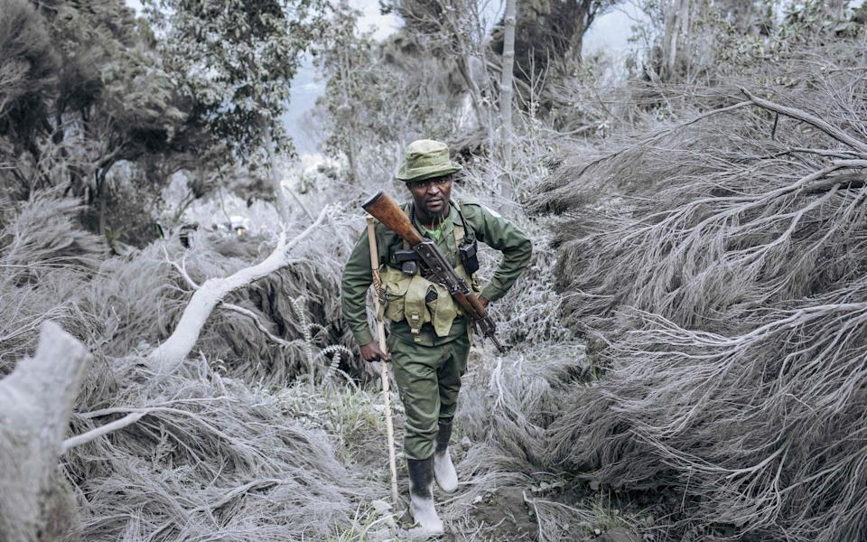 A ranger on patrol in the Congo's Virunga National Park - AFP
