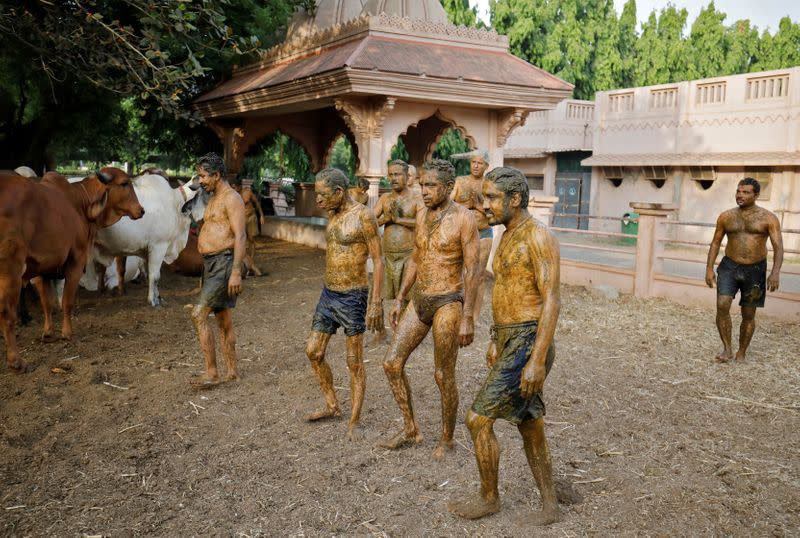 """People walk after applying cow dung on their bodies during """"cow dung therapy"""" on outskirts of Ahmedabad"""