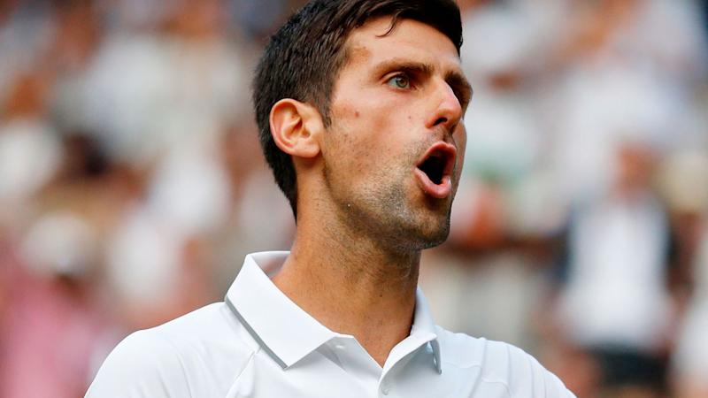Novak Djokovic questioned the umpire after a controversial moment on championship point. Pic: Getty