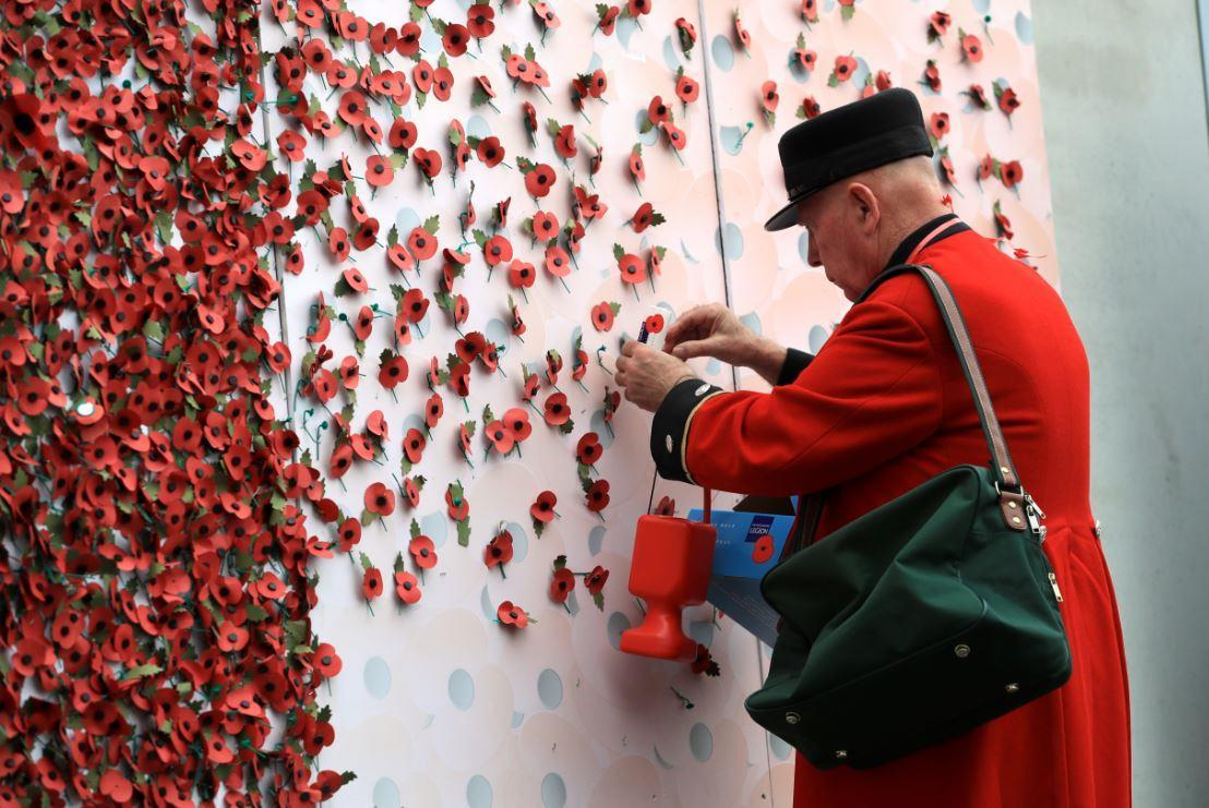 The traditional red poppy (PA)