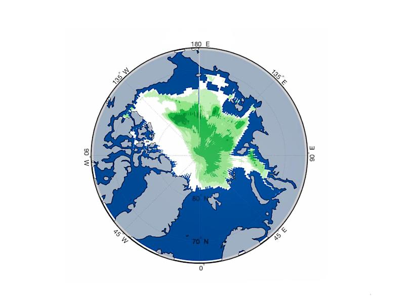 This computer model shows areas of ice thin enough to allow plankton to grow underneath