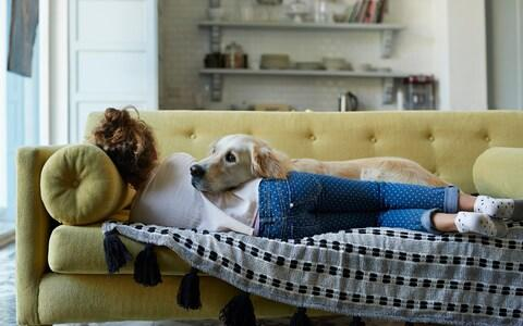 Girl sleeping on couch with her Golden Retriever dog - Credit: Getty Images