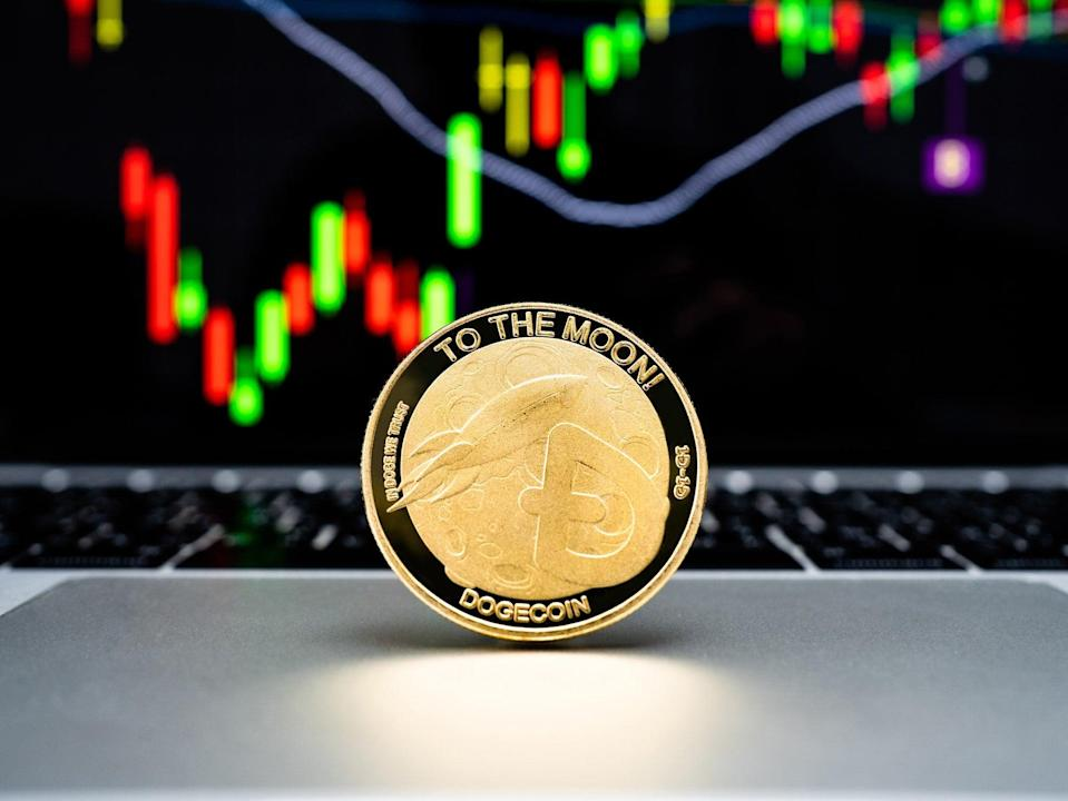The price of dogecoin peaked in May but fell dramatically, losing around 75 per cent of its value by 22 June, 2021 (Getty Images)