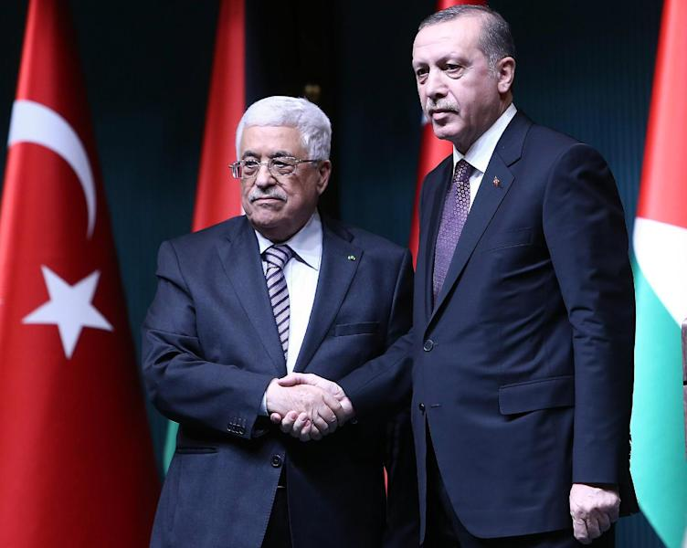 Turkish President Recep Tayyip Erdogan shakes hands with Palestinian President Mahmud Abbas at the presidential palace in Ankara, on January 12, 2015 (AFP Photo/Adem Altan)