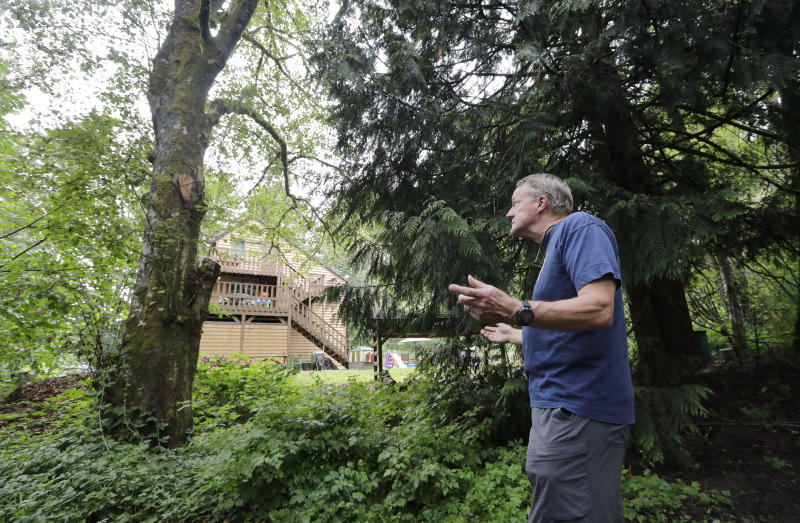 In this photo taken Friday, Aug. 2, 2019, Wayne Elson looks up at a dead tree that he says he needs to cut down, as it could fall and block the road in a fire, as he walks in front of his home in Issaquah, Wash. Elson is the firewise coordinator in the development, his home one of hundreds of houses in his community built into the woods there. (AP Photo/Elaine Thompson)