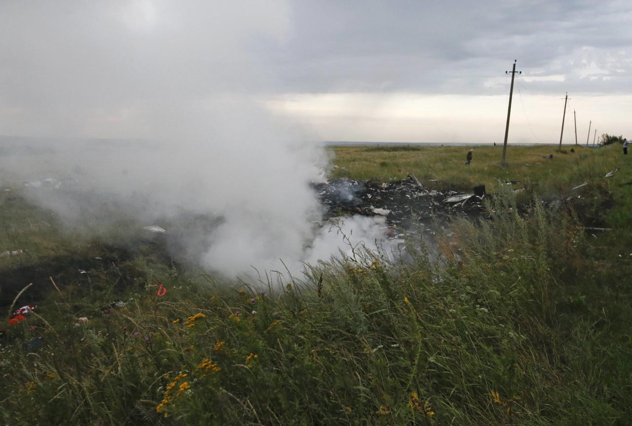 The site of a Malaysia Airlines Boeing 777 plane crash is seen near the settlement of Grabovo in the Donetsk region, July 17, 2014. The Malaysian airliner MH-17 was brought down over eastern Ukraine on Thursday, killing all 295 people aboard and sharply raising stakes in a conflict between Kiev and pro-Moscow rebels in which Russia and the West back opposing sides. REUTERS/Maxim Zmeyev (UKRAINE - Tags: TRANSPORT DISASTER POLITICS CIVIL UNREST)