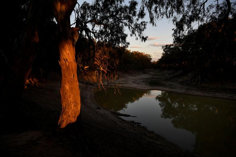 The Wider Image: Thirst turns to anger as Australia's mighty river runs dry