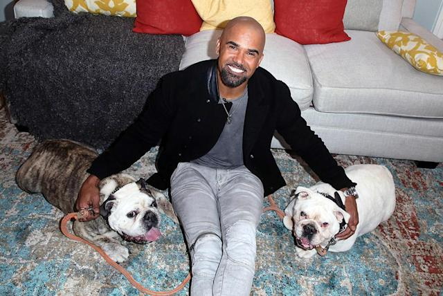 "<p>Talk about animal magnetism! The handsome <em>S.W.A.T.</em> star took his pups to visit Hallmark's ""Home & Family"" at Universal Studios Hollywood on Tuesday. (Photo: David Livingston/Getty Images) </p>"