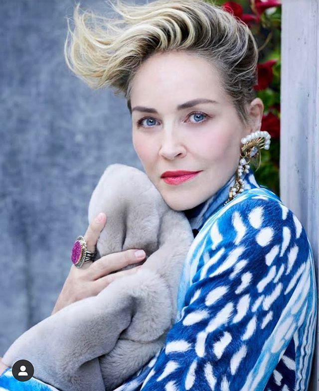 """<p>Sharon Stone needs no introduction, yet if you're a Murphy-verse neophyte, you might be surprised to learn that <em>Ratched</em> is her first collaboration with Murphy. Stone makes a feast of her part in <em>Ratched</em>, where she plays Lenore Osgood, a staggeringly wealthy heiress hell-bent on getting revenge against Dr. Hanover.</p><p><a href=""""https://www.instagram.com/p/CFI--Pnp8lb/"""" rel=""""nofollow noopener"""" target=""""_blank"""" data-ylk=""""slk:See the original post on Instagram"""" class=""""link rapid-noclick-resp"""">See the original post on Instagram</a></p>"""