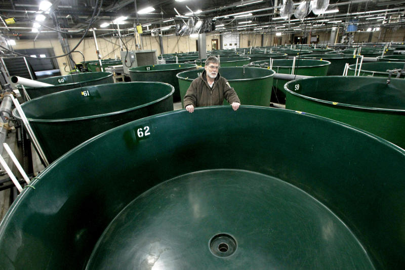 Vt. fish hatchery damaged by Irene almost fixed